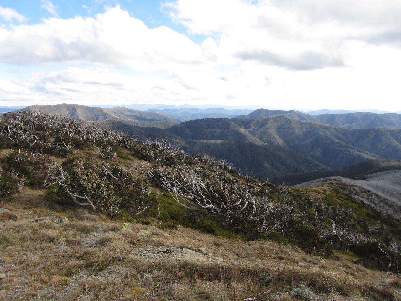 First frame of a high country panorama.
